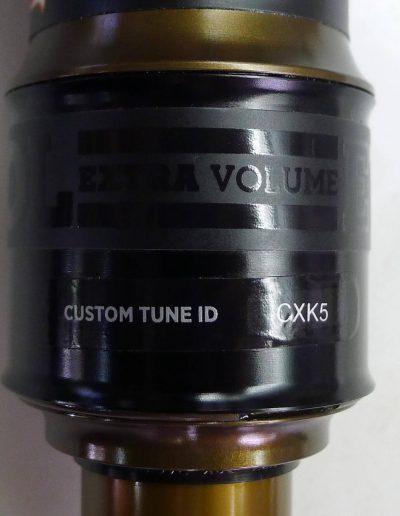Beispiel einer Custom Tune ID des Fox Float X